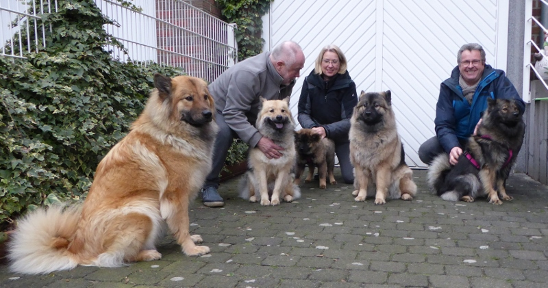 Home Besuch Spaziergang